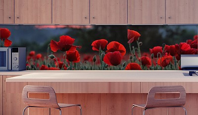 k chenr ckwand klatschmohn am abend plexiglas. Black Bedroom Furniture Sets. Home Design Ideas